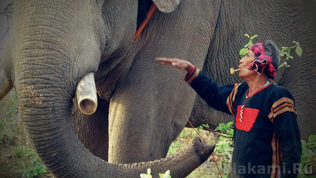 Деревня короля слонов: Buon Don в провинции Даклак