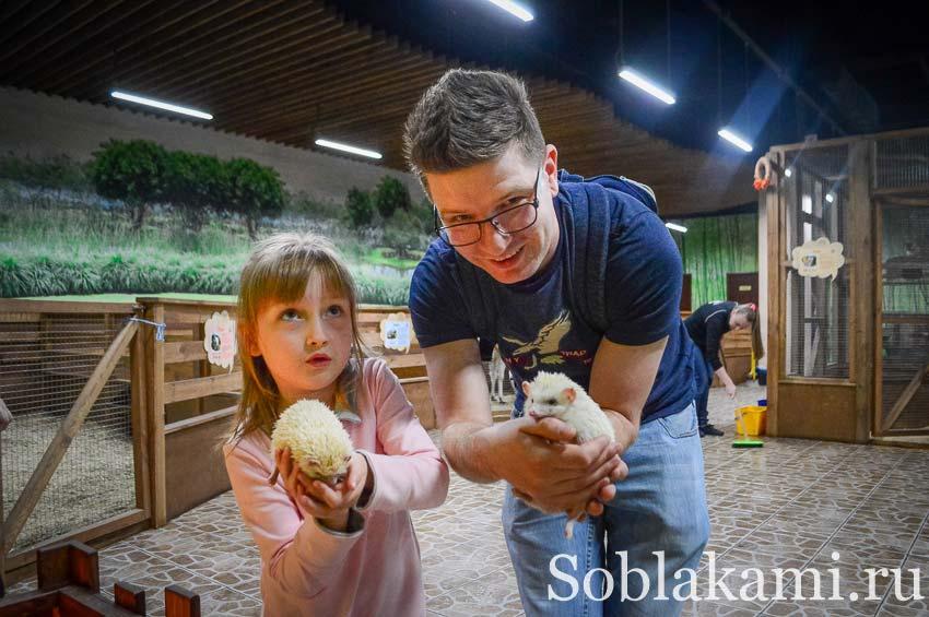 Страна Енотия: контактный зоопарк в Киеве